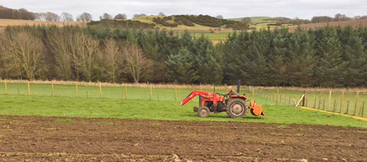 tractor ploughing tea plantation in Scotland